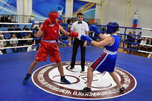 турнир по боксу имени Вячеслава Яновского