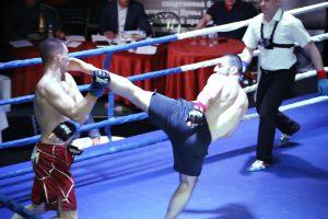 ММА, Битва на Севере, турнир